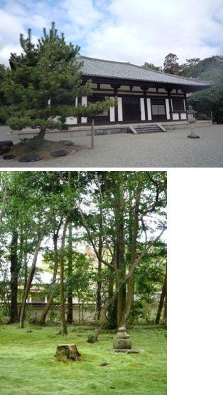 ●秋篠寺 本堂.JPG5656.jpg