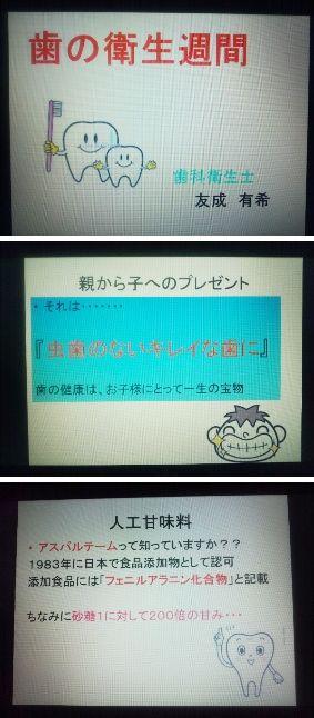 DSC_0044.JPG45.JPG33.jpg