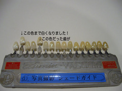 P1010684-2.jpg