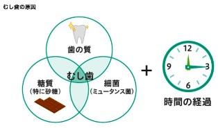 image.jpg798645.jpg